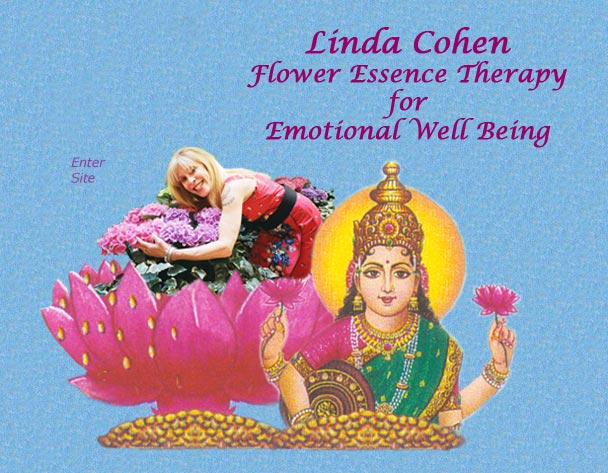 Linda Cohen Flower Essence Therapy for Emotional Well Being